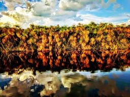 Okavango Delta – Part 1